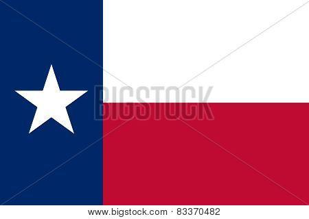 The Texas Official Flag
