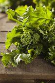 Organic Raw Green Broccoli Rabe Rapini on a Background poster