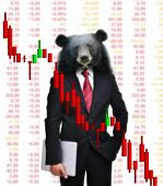 business man with bear head in tock investment concept poster