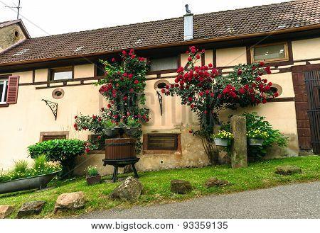 Typical Alsacien House In Small Village, Bas-rhin