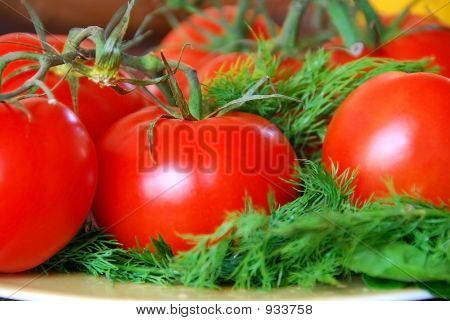Perfect Red Fresh Tomatoes