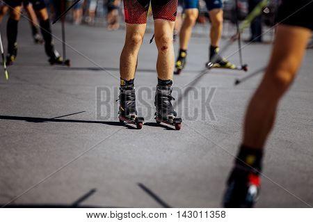 group of men athletes on ski-rollers ride on asphalt