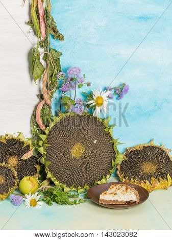 colorful autumn still life with sunflowers and ripe bright garden flowers and daisies ageratum and delicious freshly baked pastries on a background of blue and white painted wall