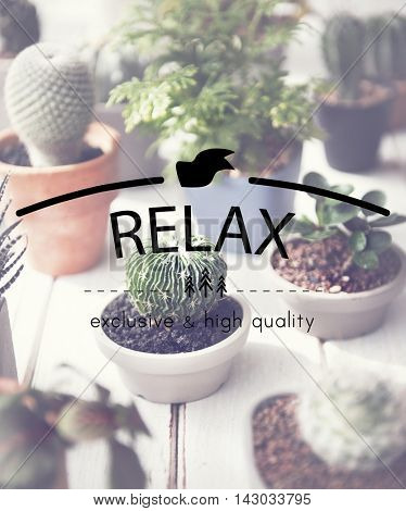 Relax Relaxation Rest Chill Peace Vacation Life Concept