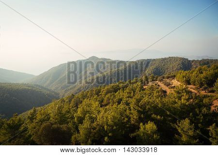 Beautiful mountain forest landscape of Rhodes Greece