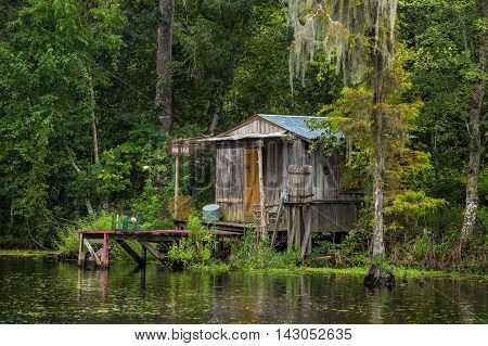 Old House In A Swamp In New Orleans