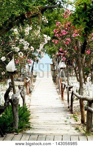 Wooden walkway to the sea among oleander and Lantern