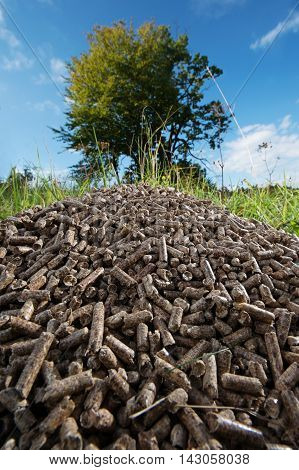 Pile of wooden pellets lying on meadow against tree and blue sky in the background. Wooden pellets effective environmentally friendly and economical heating sustainable and renewable energy