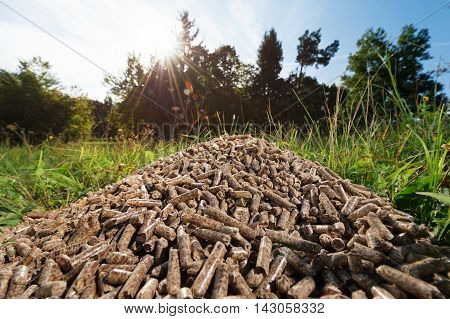 Pile of wooden pellets lying on meadow against forrest blue sky and sunshine in the background. Wooden pellets environmentally friendly and economical heating sustainable and renewable energy