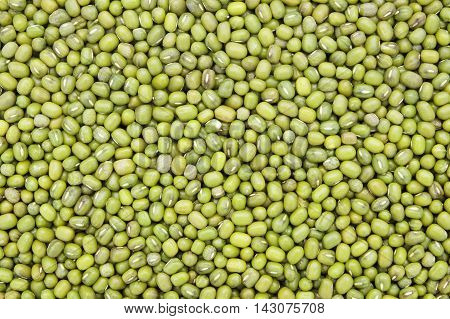 Close-up and detail of green beans background
