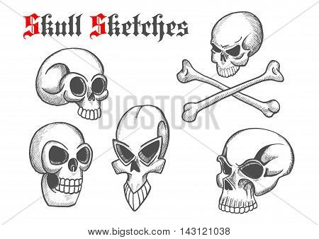 Halloween skulls sketch isolated icons. Artistic abstract shapes of cranium and crossbones for cartoon, label, tattoo, t-shirt print poster, decoration