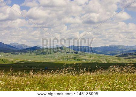Summer Colorful Nature Landscape