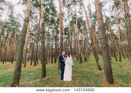 Happy stylish newlywed pair holding hands while posing in the young pine forest.
