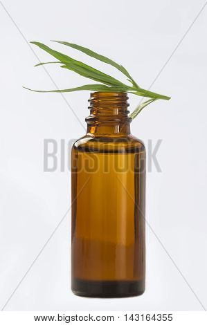 Tarragon essential oil bottle. Isolated on white background.