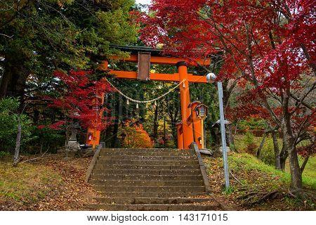 Red Torii Gate To Chureito Pagoda
