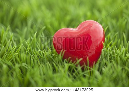 Small red heart on the grass