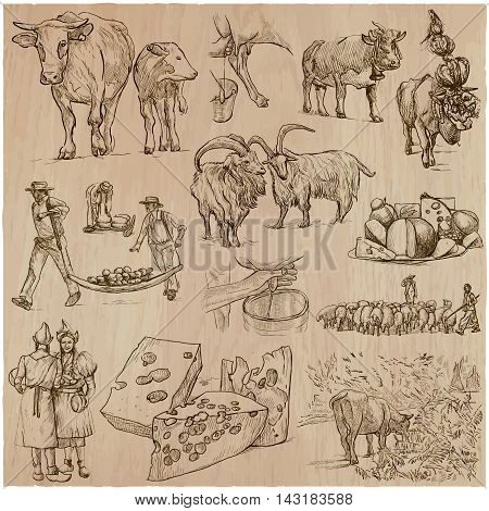 AGRICULTURE Life of a farmer. CHEESE-MAKING. Collection of an hand drawn vector illustrations. Set of freehand sketches. Line art.