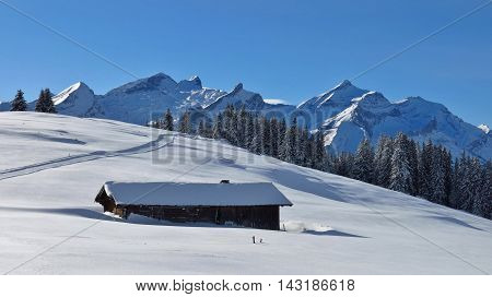 View from Mt Wispile Swiss Alps. Mt Oldenhorn. Winter scene near Gstaad.