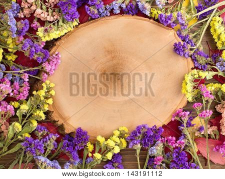 Dried multicolored statice flowers around tree cut with copy space