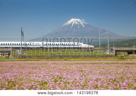 Shizuoka - MAY 05 : Shinkansen bullet train and Mountain Fuji on May 05 , 2016 , Shizuoka ,Japan. Shinkansen is world's busiest high-speed railway operated by four Japan Railways companies.
