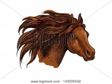 Horse head with wavy mane close-up portrait. Beautiful brown stallion running with wind in mane and shiny eyes