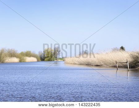 Wetland or marsh with jetty and reeds. Riverside scene.