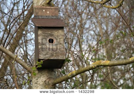Birdbox Fix To A Tree