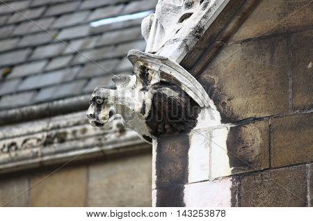 Gargoyle in Westminster Palace in London, UK