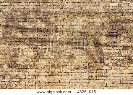 Vintage grunge brick wall exterior building backdrop