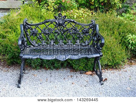 Decorative black bench in garden bush and flowers on background
