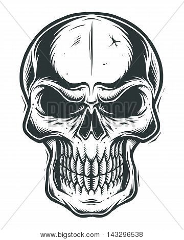 Isolated skull on white background. line work style
