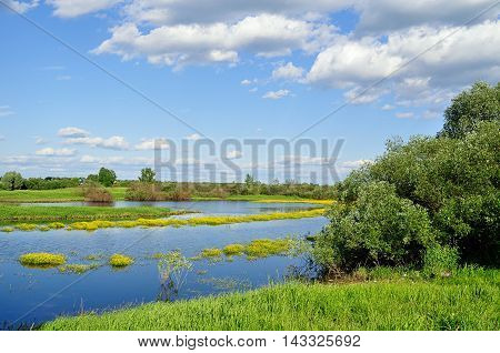 Summer water landscape - picturesque landscape view of small river in summer sunny day. Summer colorful landscape of river overgrown with yellow flowers