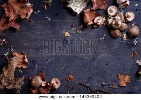 Shiitake mushrooms on wooden table, autumn harvest background. Top view, copy space.