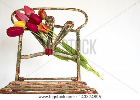 bouquet of tulips flowers with heart in the center of the old backrest chair in iron, white background