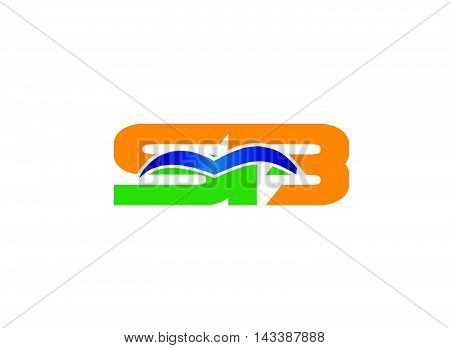 B and S logo vector. logotype template