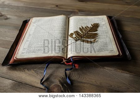 Open vintage Bible on wooden background with focus on old pressed fern leaf on page. Bible is non trademark version.