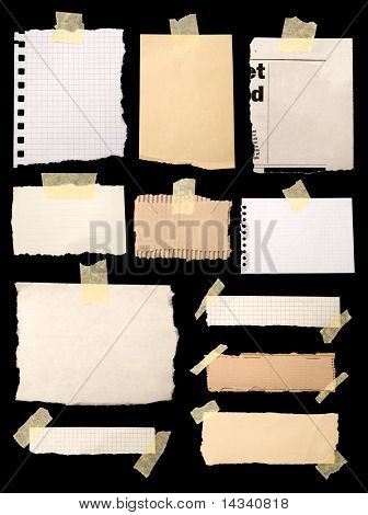 Pieces of notepaper