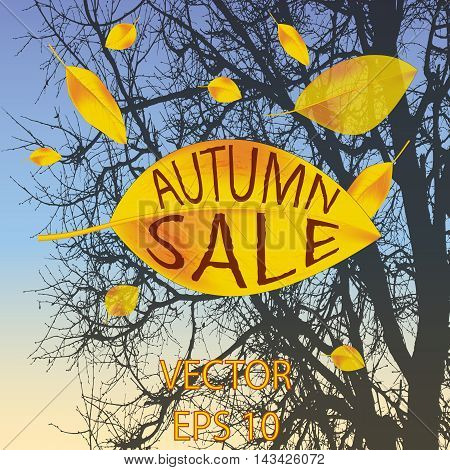 yellow leaves fall off the tree. the autumn sale. the inscription can be replaced