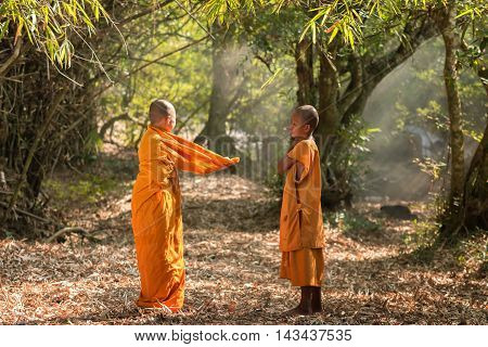 Buddhism neophyte playing little monk life style in Buddihist temple