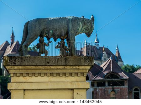 statue of she-wolf suckling Romulus and Remus in Sighisoara in Romania