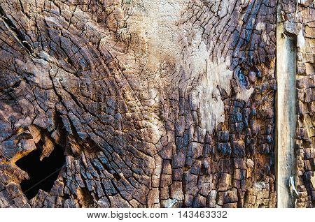 Burned wooden cracks wall texture and background