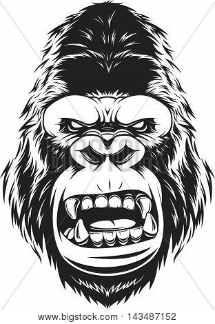 Vector illustration fierce gorilla head on white background