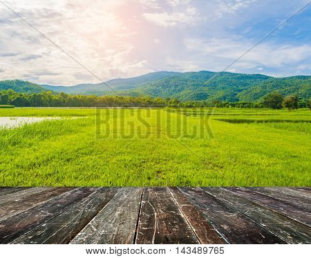 Wood Table And Image Of Green Mountain .