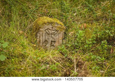 a very old milestone found in a danish forrest