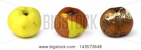 Phases of the rotting yellow apple isolated on black