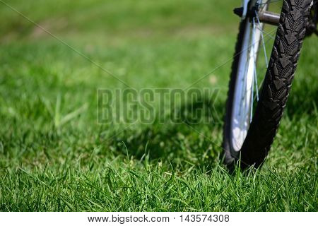 Bike on green grass in the park