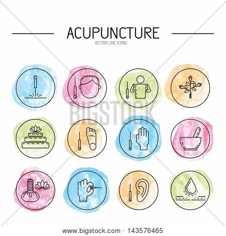 Ayurveda vector illustration icon vata pitta kapha. Ayurvedic body types. Ayurvedic infographic. Healthy lifestyle. Harmony with nature.