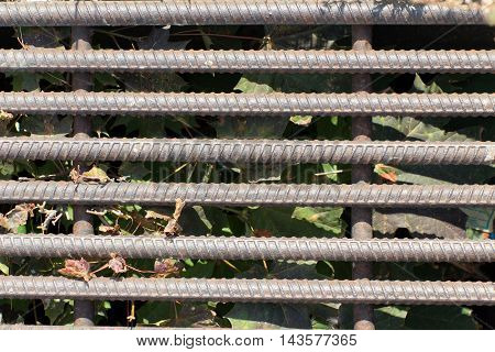 Old and rusty iron bars. In the background (in shadow) dried leaves and grass.