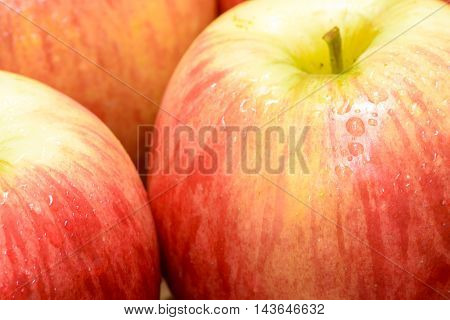 Apple fruit is one of the popular fruits.
