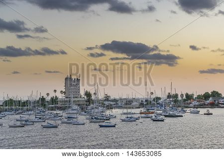 Sunset scene of a lots of sailboats at river plate river in Montevideo Uruguay